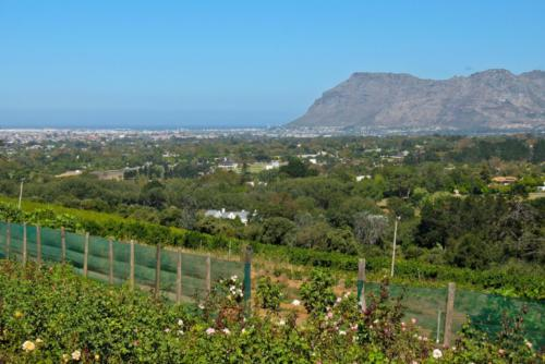 Views of Muizenberg
